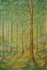 Wald der Träume